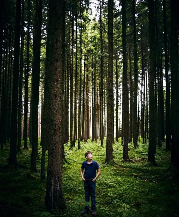 O jovem alemão tem a meta de plantar 1 trilhão de árvores (Foto: Benno Kraehan/ Reprodução)