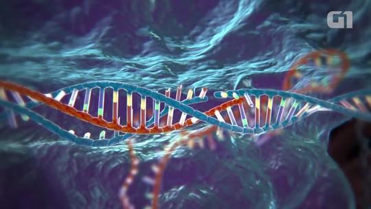 Nova técnica de edição genética dita como revolucionária pode causar mais mutações do que se imaginava, dizem cientistas