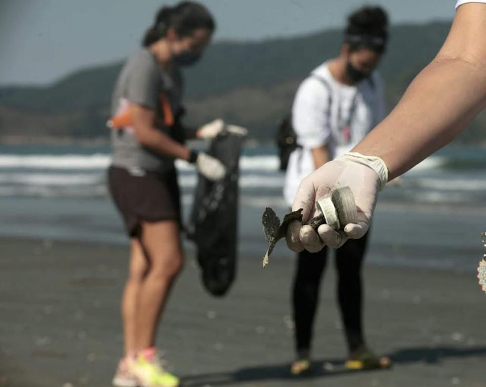 Equipes fizeram coleta de lixo para pesquisa na orla de Santos, SP — Foto: Divulgação/Prefeitura de Santos