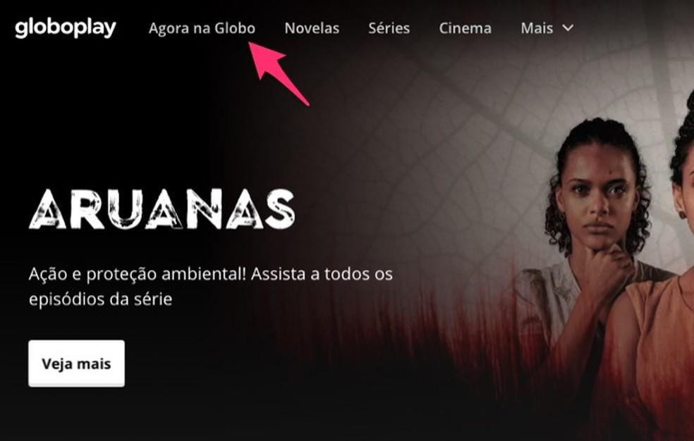 Brasil X Peru Ao Vivo Como Assistir A Final Da Copa America Online Audio E Video Techtudo