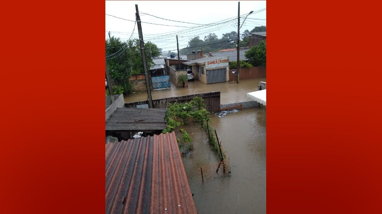 Chuva causa pontos de alagamentos e quedas de árvores em cidades do Paraná