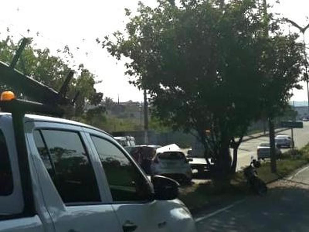 Outro motorista, que teria tentado desviar do primeiro acidente, colidiu em uma árvore poucos metros depois — Foto: Divulgação