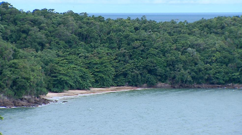 Praia Mansa, em Ubatuba  é considerada reservada e, por isso, atraiu ineresse dos naturistas (Foto: Reprodução/TV Vanguarda)