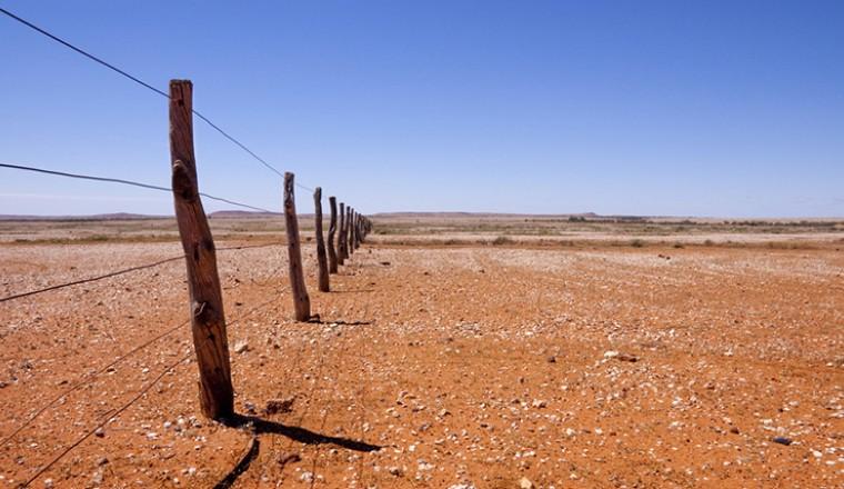 Seca em estado australiano (Foto: Divulgação/ Governo de NSW)
