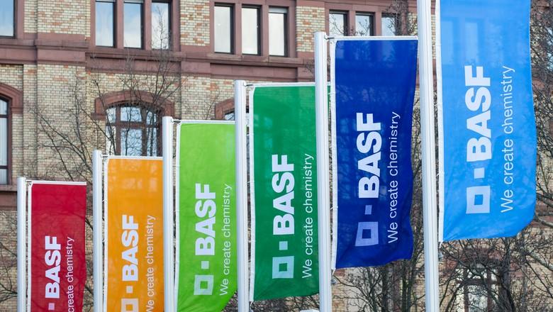 basf-bandeiras-empresa-química (Foto: Divulgação/ BASF)