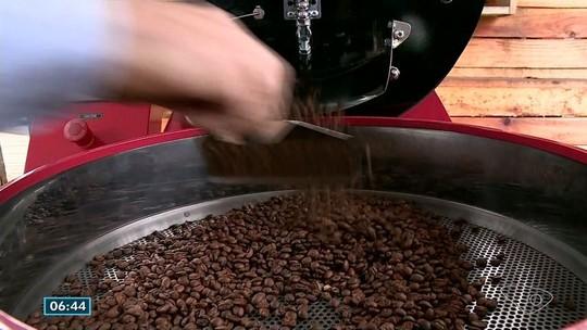 Produção de cafés especiais é tema de encontro na região do Caparaó, no ES