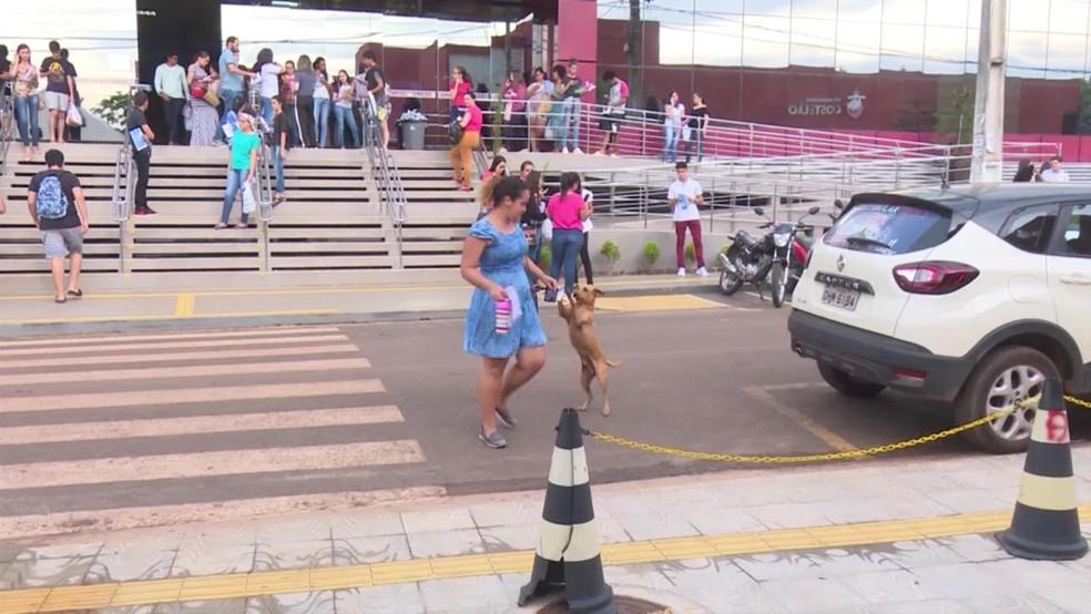 O cachorro pulou de alegria ao rever dona após quase sete horas de espera.  — Foto: Reprodução/Rede Amazônica