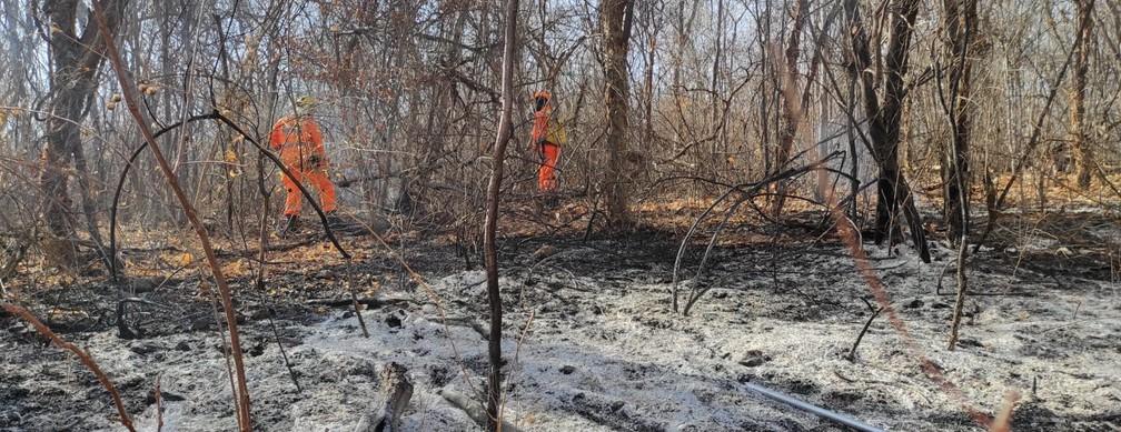 Incêndio em Janáuba — Foto: Corpo de Bombeiros