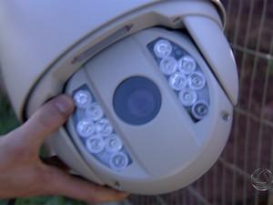Pecuaristas investem em segurança para evitar prejuízos (Foto: Reprodução/TV Morena)