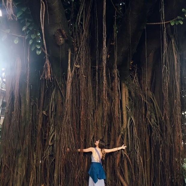 Luiza Voll ensina como encontrar a tranquilidade do interior na cidade grande (Foto: Arquivo pessoal )