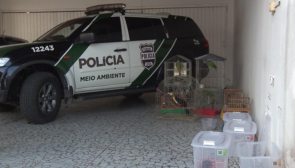 Suspeitos foram presos por manter os animais em cativeiro sem autorização — Foto: Reprodução/RPC