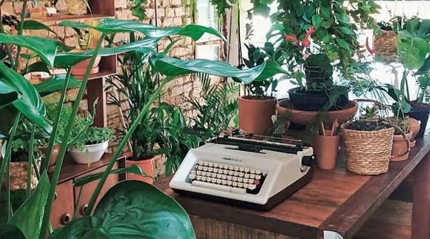 Quintal e Jardin do Centro foram criados por casal de empresários (Foto: Divulgação)