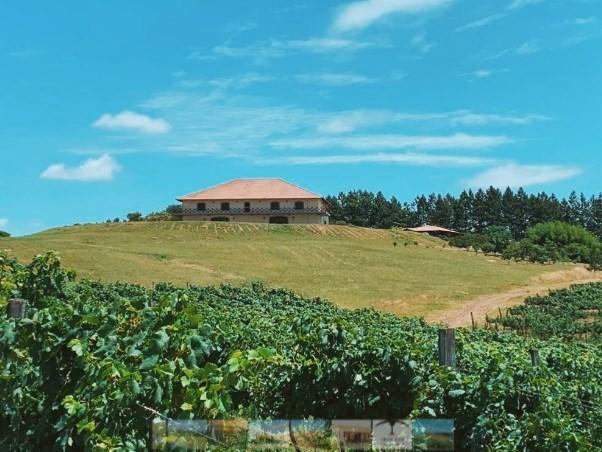 IP Campanha Gaúcha: área de 44mil quilômetros quadrados no Sul do país