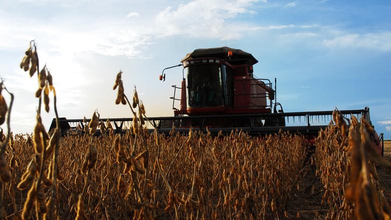 Colheita de soja atingiu 17% da área no Brasil — AgRural