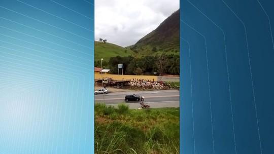 Caminhão carregado de leite bate e carga é saqueada na BR-101, na Serra