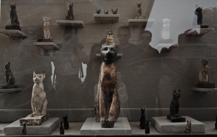 Arqueólogos encontram tumbas com múmias de gato no Egito