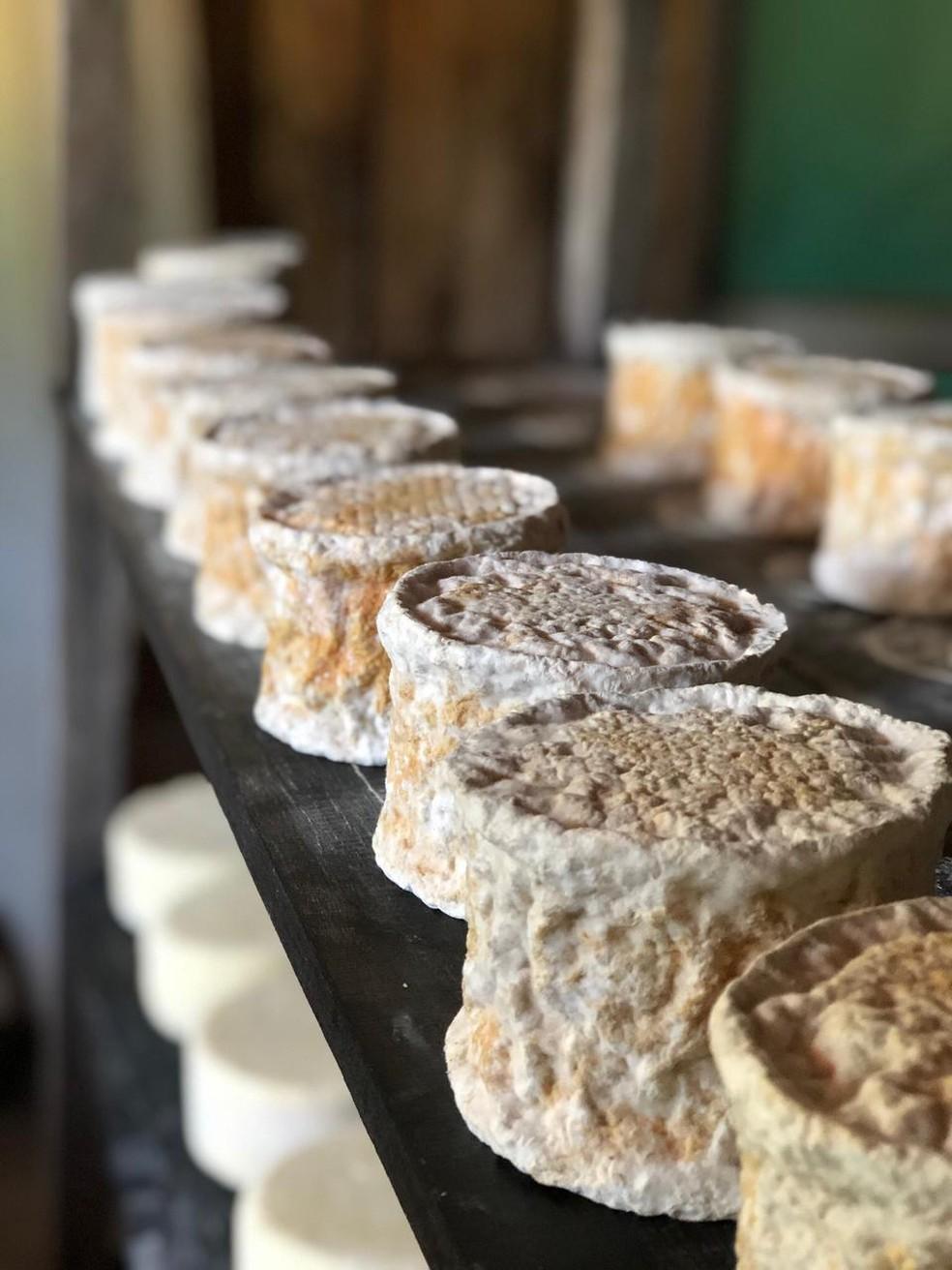 Produção Maria Nunes no quarto de queijo. — Foto: Arquivo pessoal.