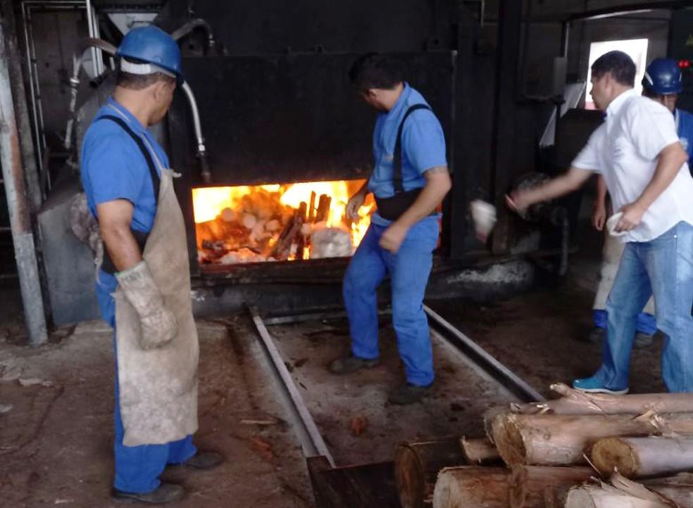 Alimentos impróprios para consumo foram incinerados em Presidente Prudente (Foto: Secom/Divulgação)