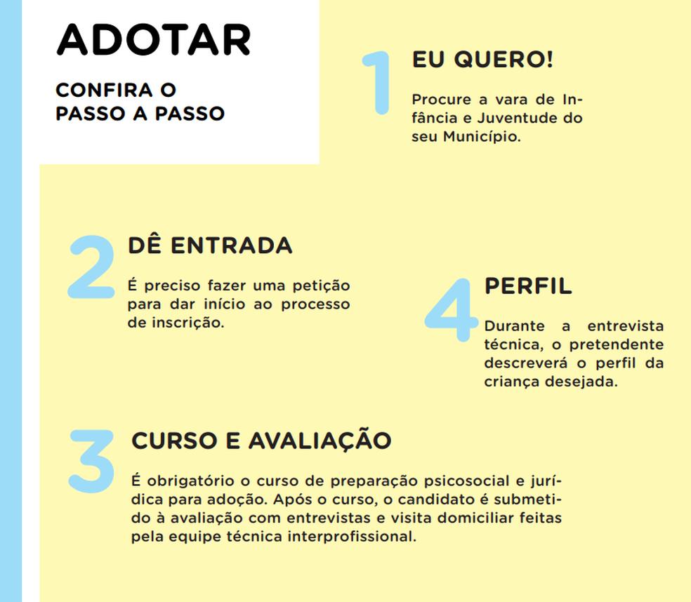 """Passo a passa da adoção no guia """"Três vivas para a adoção"""", escrito por Fabiana Gadelha e Patrícia Almeida — Foto: Três vivas para a adoção/Reprodução"""
