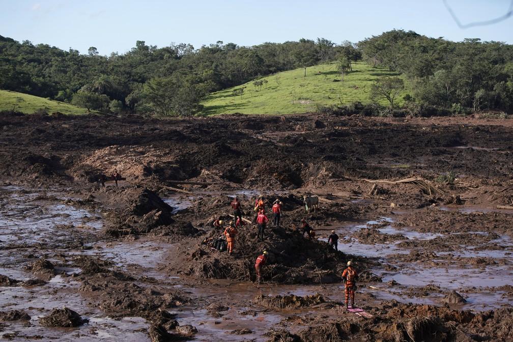 Bombeiros seguem com trabalho de buscas por vítimas e sobreviventes em Brumadinho — Foto: Leo Correa/AP