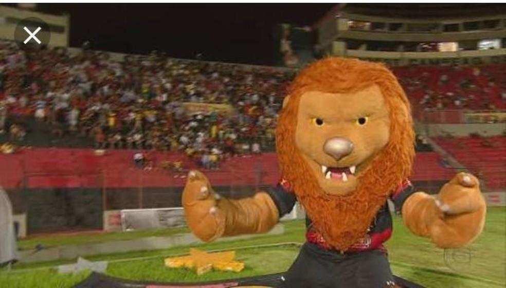 Personagem leo foi criado para animar os torcedores do Sport — Foto: Polícia Civil/Divulgação