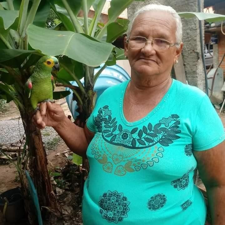 Idosa de 71 anos que perdeu filho para a Covid há três meses consegue vaga em UTI: 'a família está em festa'