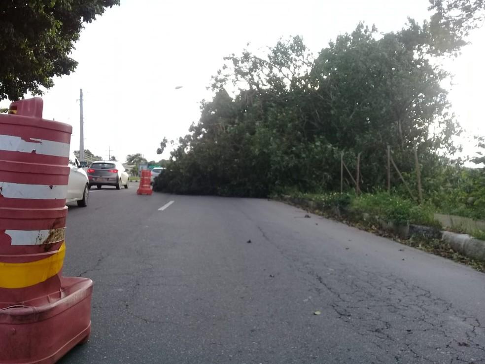 Acidente ocorreu sentido Vilas do Atlântico — Foto: Cid Vaz/TV Bahia