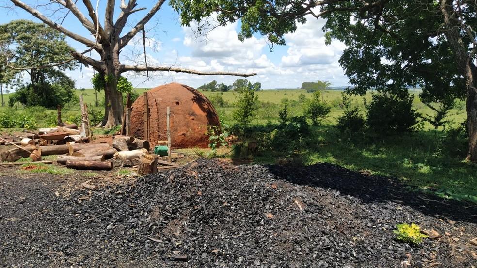 Carvão produzido ilegalmente foi apreendido em Piquerobi — Foto: Polícia Militar Ambiental