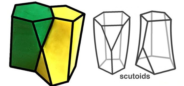 """Scutoid"", nova forma geométrica descoberta por cientistas (Foto: University of Seville/Divulgação)"