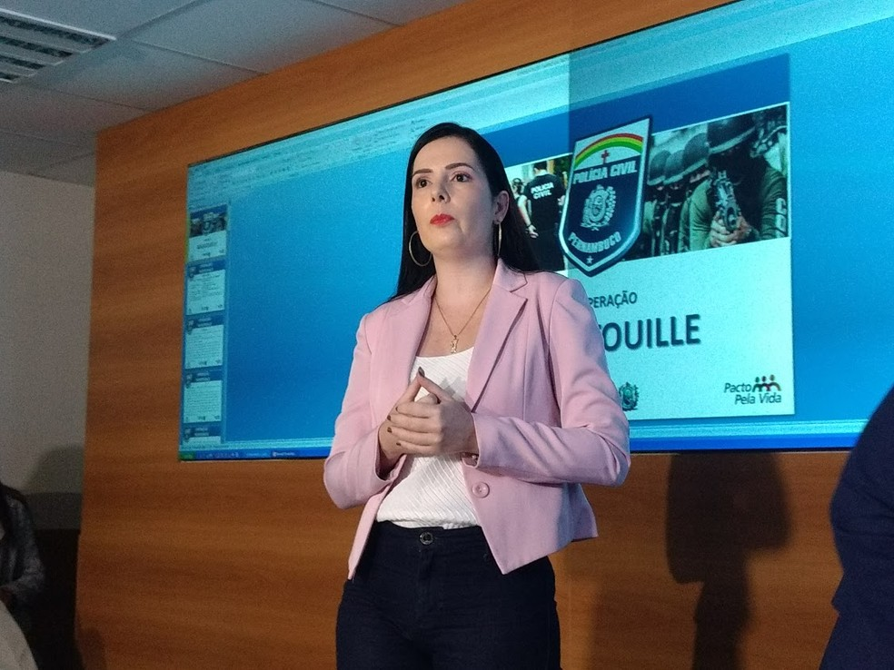 Delegada Patrícia Domingos é titular da Delegacia de Repressão aos Crimes Contra a Administração e Serviços Públicos de Pernambuco (Foto: Pedro Alves/G1)