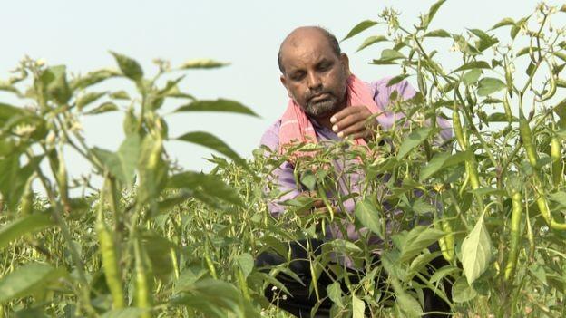 Vijendra Tadvi diz que o governo deveria investir em infraestrutura para a agricultura, não em estátuas (Foto: BBC News Brasil)