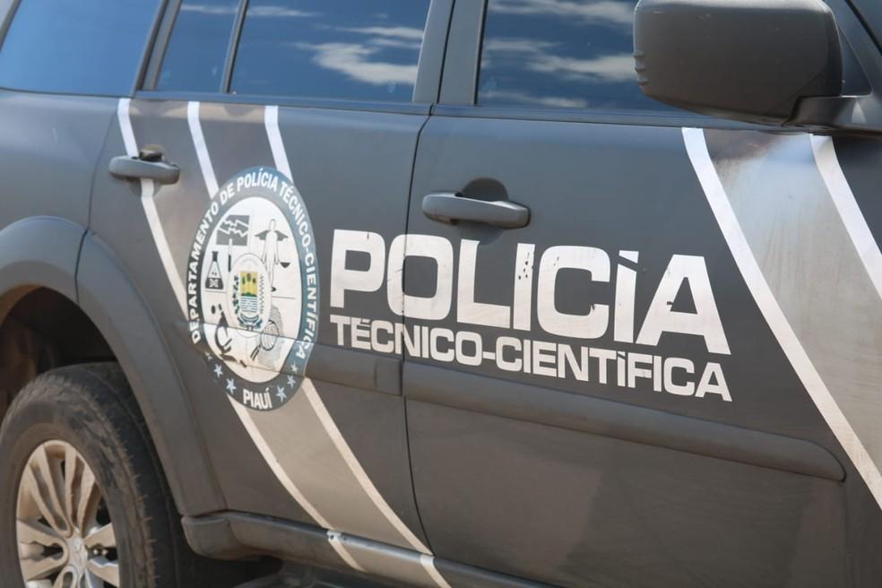 Policiais e peritos trabalham para tentar identificar jovem morto a pauladas em Parnaíba, litoral do Piauí — Foto: Andrê Nascimento/G1 PI