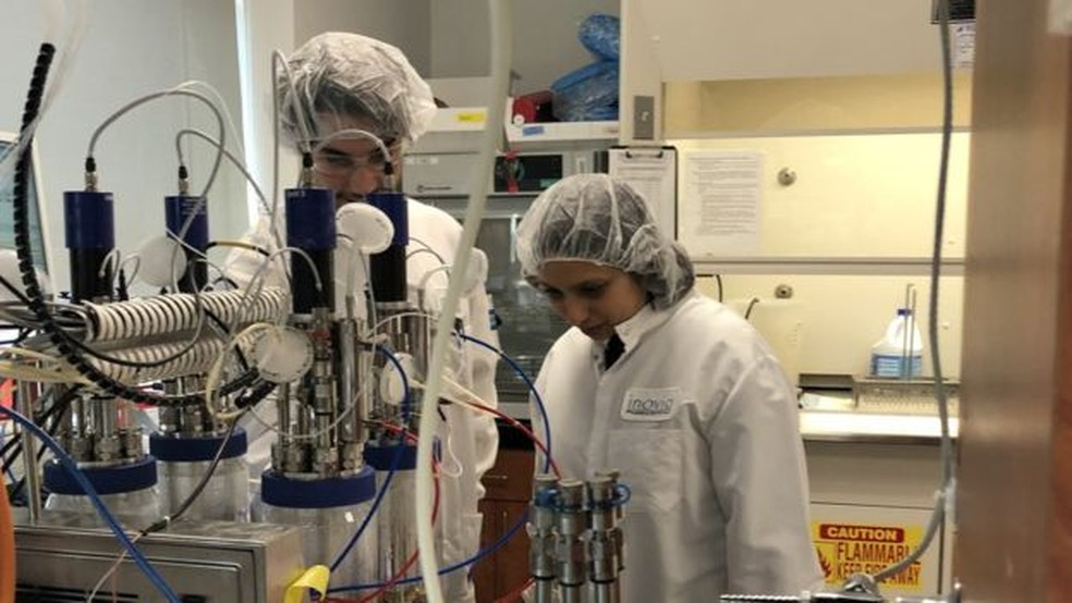 Cientistas no laboratório da Inovio em San Diego, na Califórnia (EUA) — Foto: BBC