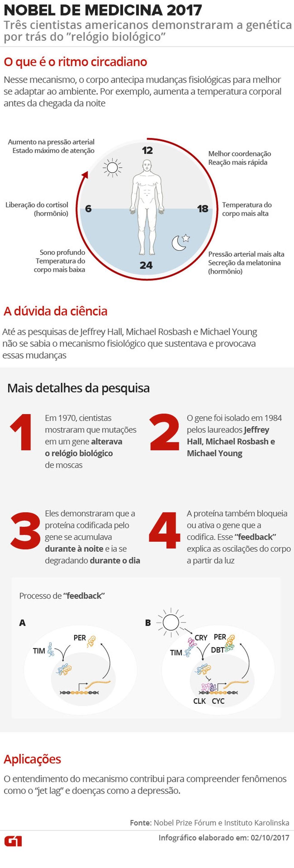 (Foto: Juliane Souza/Infográfico G1)