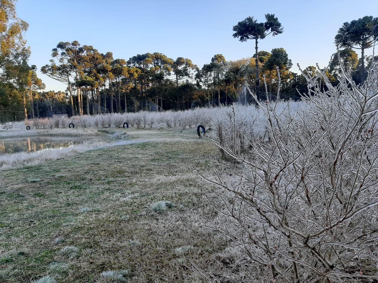 FOTOS: Veja imagens do amanhecer gelado no RS nesta quarta