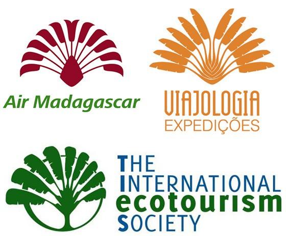 A Sociedade Internacional de Ecoturismo, a linha aérea Air Madagascar e a operadora Viajologia Expedições escolheram a árvore-do-viajante como símbolo para sublinhar a relação entre a viagem e a natureza  (Foto:  Reprodução)