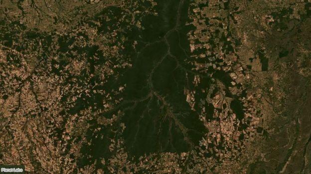 Imagem de satélite mostra avanço de fazendas de gado e soja nos limites de áreas protegidas da bacia do Xingu, em Mato Grosso (Foto: PLANET LABS, via BBC News Brasil)