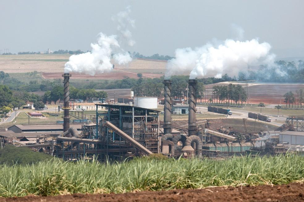 Fábrica de etanol em Piracicaba (SP) (Foto: Marcelo Brandt/G1)