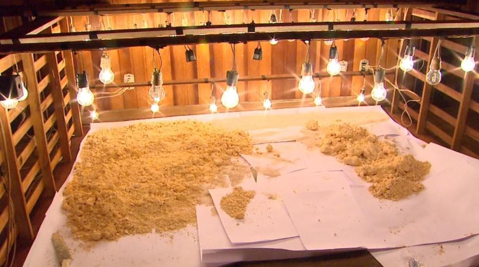 Grupo improvisou estufa em quarto para acelerar preparo de cocaína em Ribeirão Preto (Foto: Reprodução/EPTV)