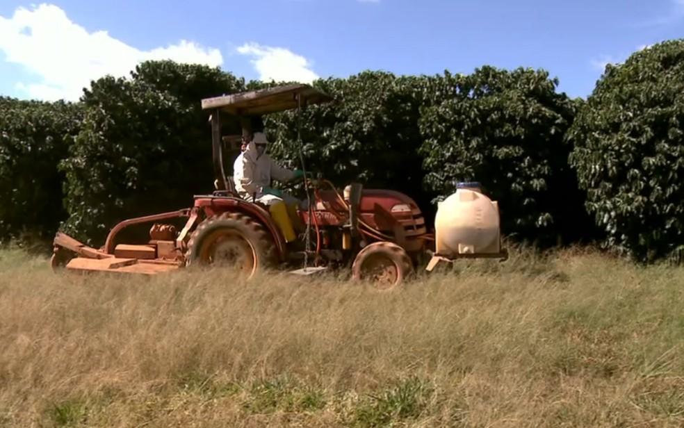 Trator que realiza mais de uma função é um dos segredos para economizar nas operações da fazenda AP, em Minas Gerais (Foto: Globo Rural)