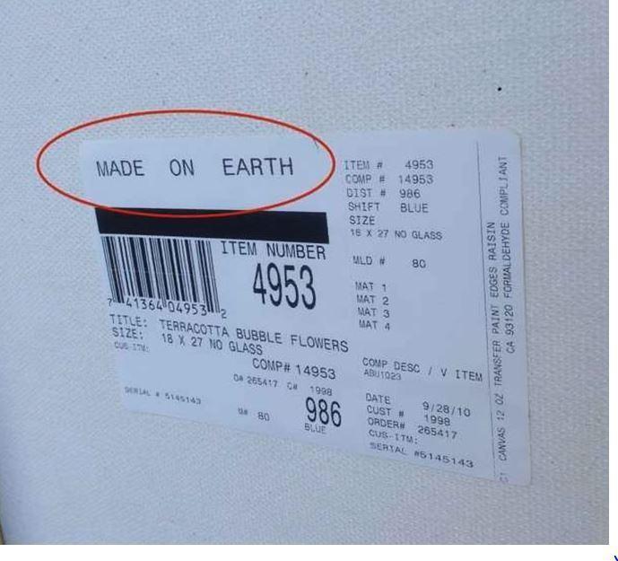 'Feito na Terra'... Que alívio! Como seriam flores alienígenas?