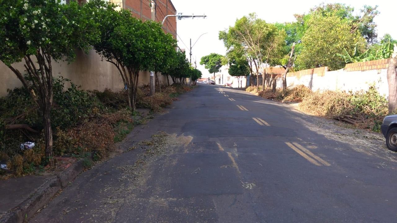 Galhos deixados há uma semana na calçada de rua em Piracicaba atrapalham pedestres  - Noticias
