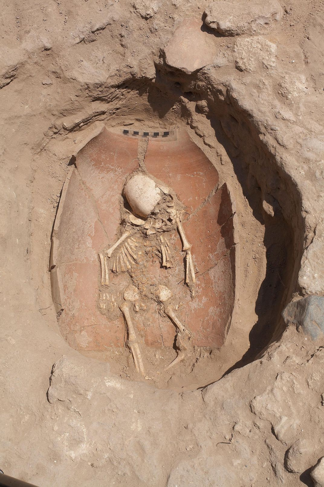 Corpo de uma criança filistéia encontrado em Ascalã. Filisteus cavavam um pequeno buraco e enterravam mortos na própria casa. (Foto: Melissa Aja/Leon Levy Expedition)