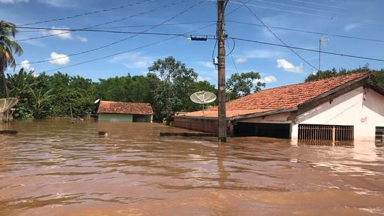Foto: (Cláudia Gaigher/TV Morena)