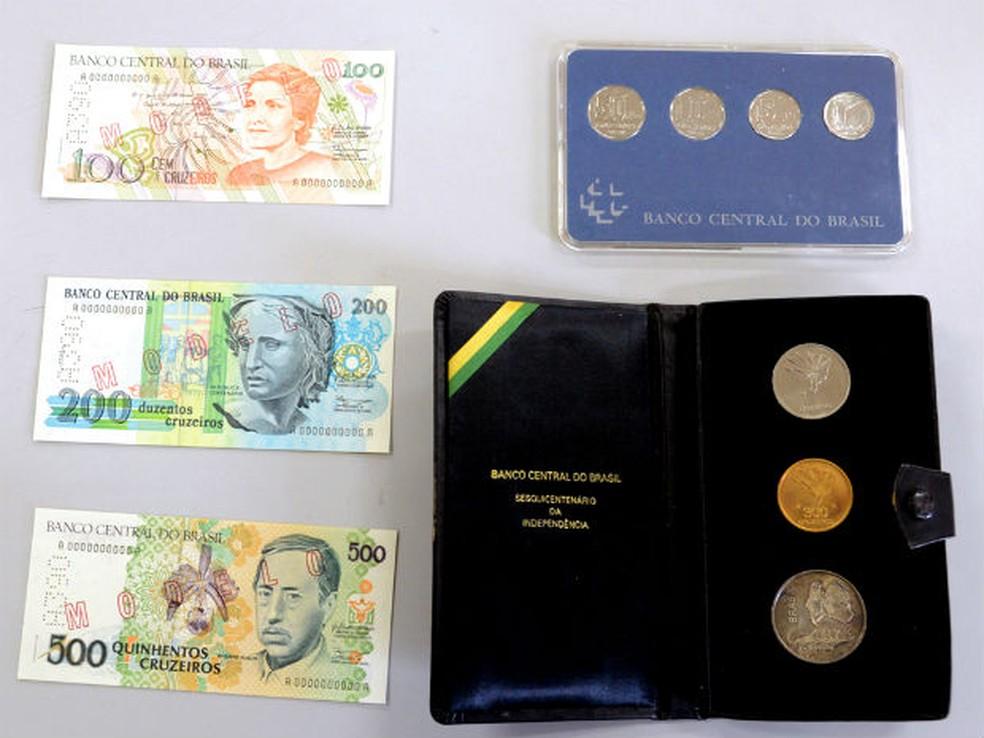 Diversos exemplares do Brasil integram a coleção (Foto: Zaqueu Proença)