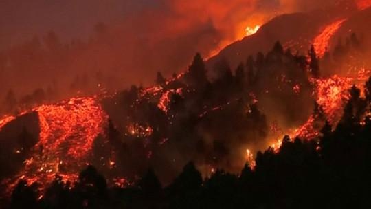 Foto: (FORTA/Handout via Reuters)