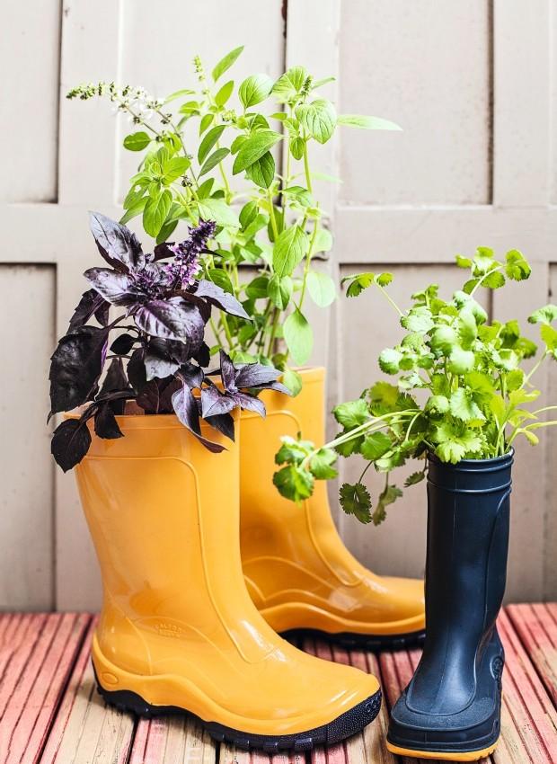 Jeito divertido de cultivar ervas: em galochas! A poda das flores evita que tirem a energia do manjericão. Botas da BB Básico (Foto: Elisa Correa / Editora Globo)