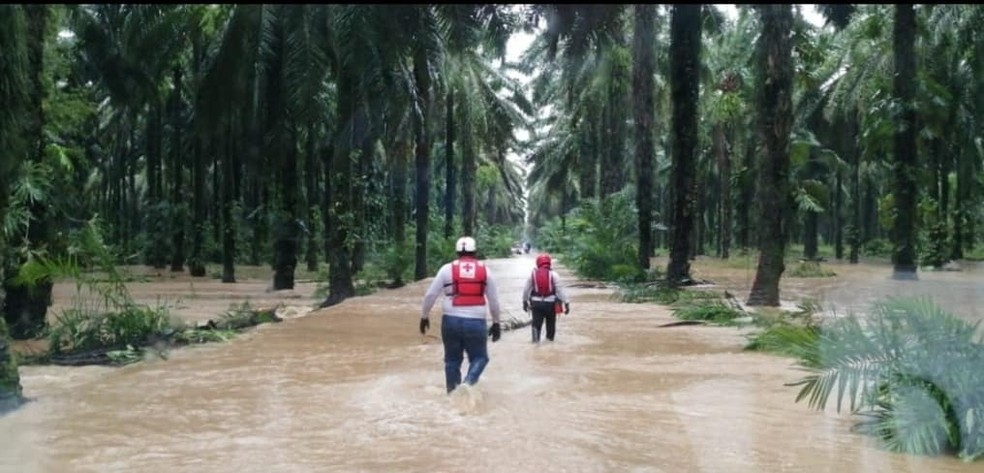 Tempestade tropical ETA matou cerca de 100 pessoas na Guatemala até este 6 de novembro. — Foto: Cruz Vermelha