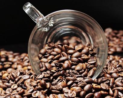 Café arábica acumula alta em outubro enquanto robusta se desvaloriza