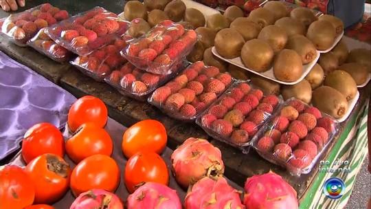 Bom Dia Cidade mostra preços das frutas para o fim de ano